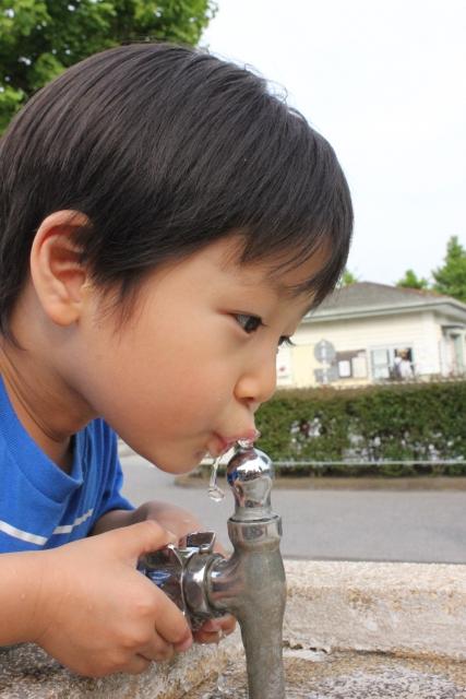 公園の水道で水を飲む男の子