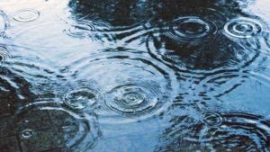 雨の日の水たまりの波紋