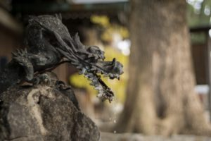 神社の手水舎の龍の彫刻