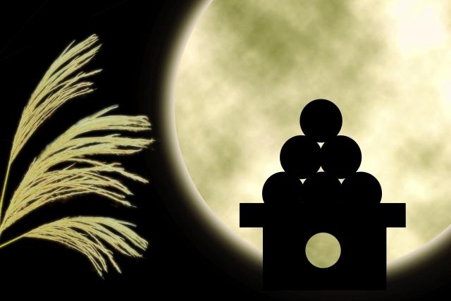 満月とススキと月見団子の影