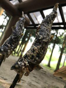 串に刺して焼いた魚
