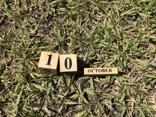 芝生の上に10とoctoberの文字の木のサイコロ