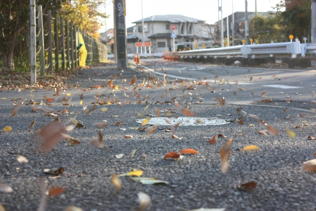風で落ち葉が舞う町の風景